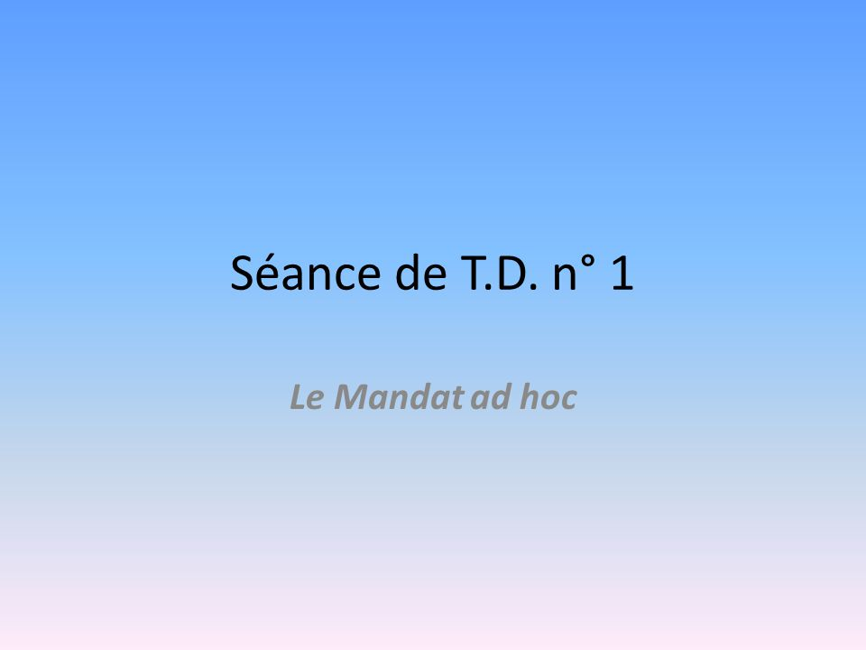 Séance de T.D. n° 1 Le Mandat ad hoc