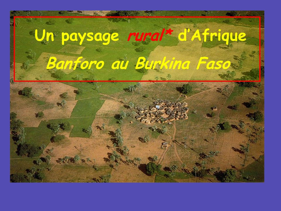 Un paysage rural* dAfrique Banforo au Burkina Faso
