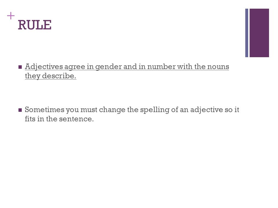 + RULE Adjectives agree in gender and in number with the nouns they describe.