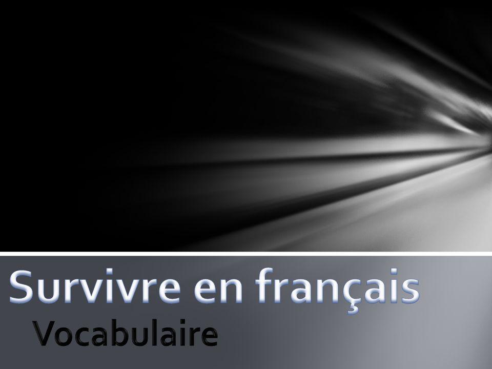Vocabulaire 1: Survivre en français 1.Nuageux 2.Froid 3.Au revoir 4.Bonjour 5.Aide 6.Chaud 7.Comment 8.Comment vas-tu.