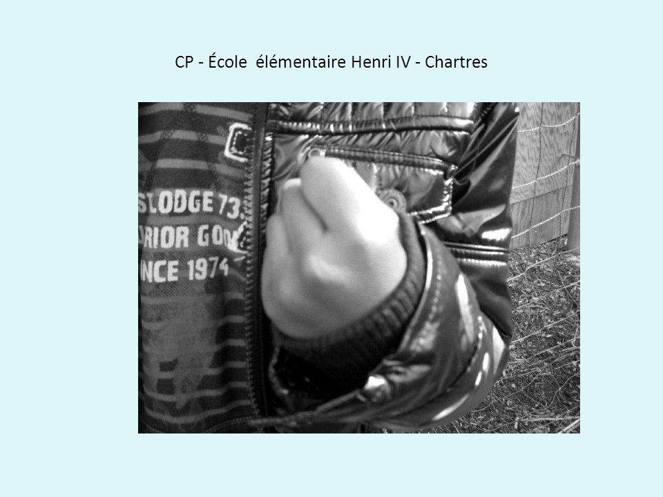 CP - École élémentaire Henri IV - Chartres