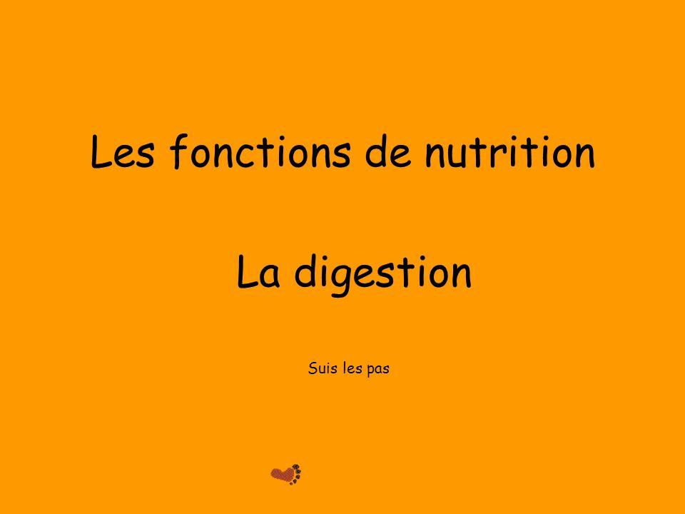 Les fonctions de nutrition La digestion Suis les pas