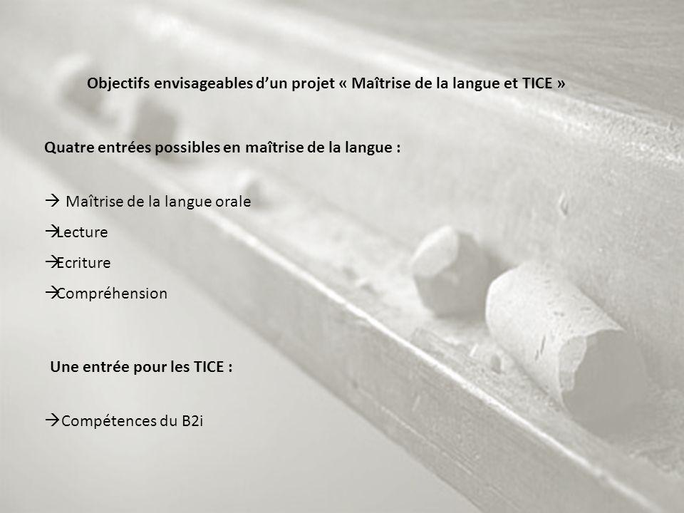 Objectifs envisageables dun projet « Maîtrise de la langue et TICE » Quatre entrées possibles en maîtrise de la langue : Maîtrise de la langue orale L
