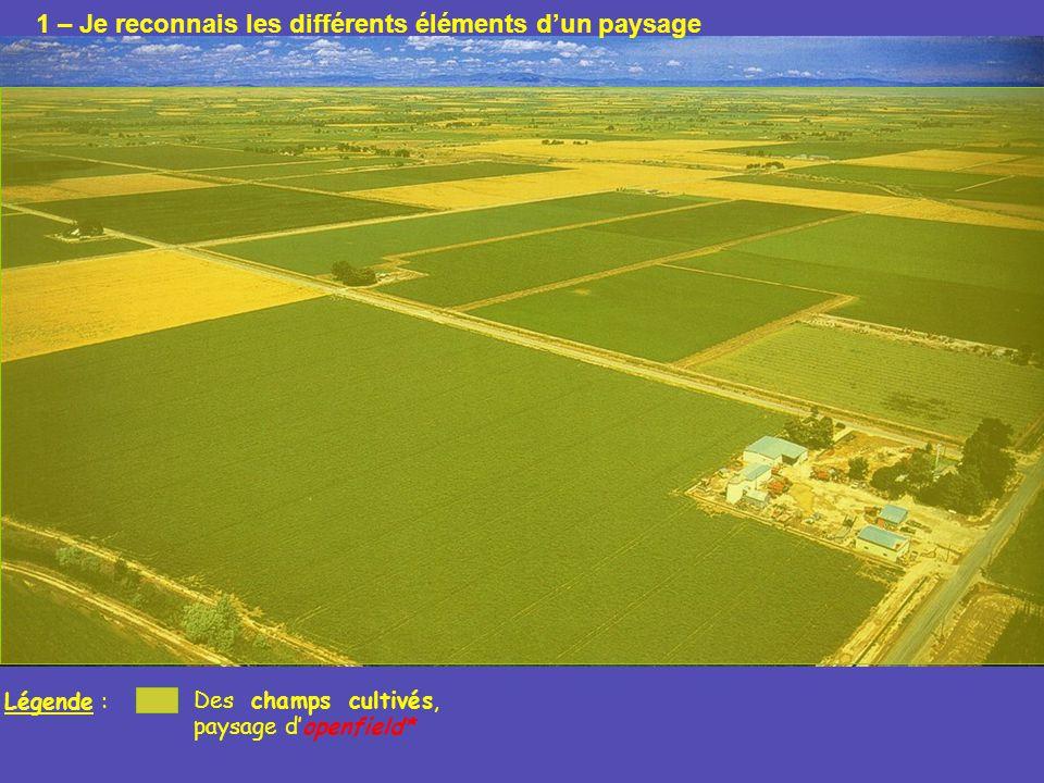 Légende : Des champs cultivés, paysage dopenfield* Exploitation agricole : maison, hangars, silos… 1 – Je reconnais les différents éléments dun paysage