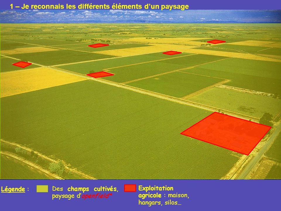 Légende : Des champs cultivés, paysage dopenfield* Exploitation agricole : maison, hangars, silos… 1 – Je reconnais les différents éléments dun paysag