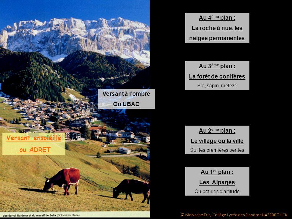 Au 1 er plan : Les Alpages Ou prairies daltitude Au 2 ème plan : Le village ou la ville Sur les premières pentes Au 3 ème plan : La forêt de conifères