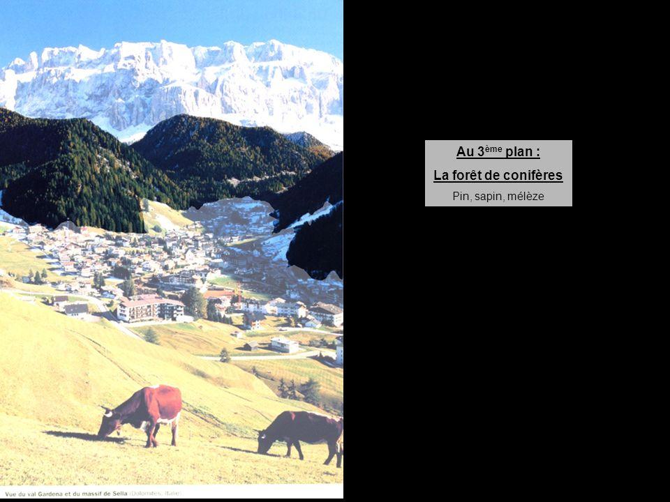 Au 4 ème plan : La roche à nue, les neiges permanentes