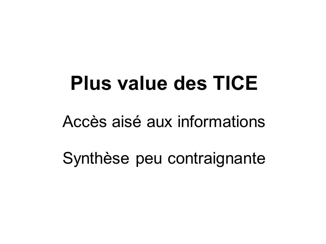 Plus value des TICE Accès aisé aux informations Synthèse peu contraignante