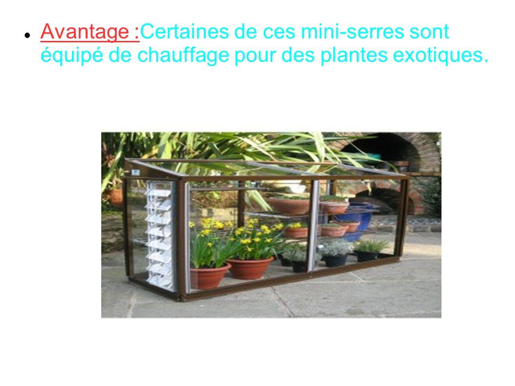Avantage :Certaines de ces mini-serres sont équipé de chauffage pour des plantes exotiques.