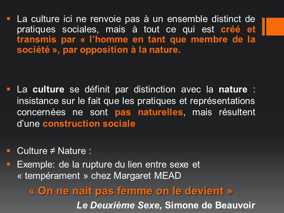 La culture ici ne renvoie pas à un ensemble distinct de pratiques sociales, mais à tout ce qui est créé et transmis par « lhomme en tant que membre de