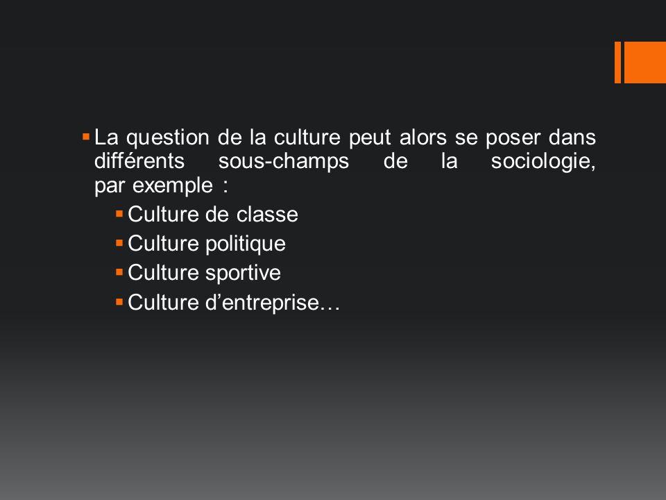 La question de la culture peut alors se poser dans différents sous-champs de la sociologie, par exemple : Culture de classe Culture politique Culture