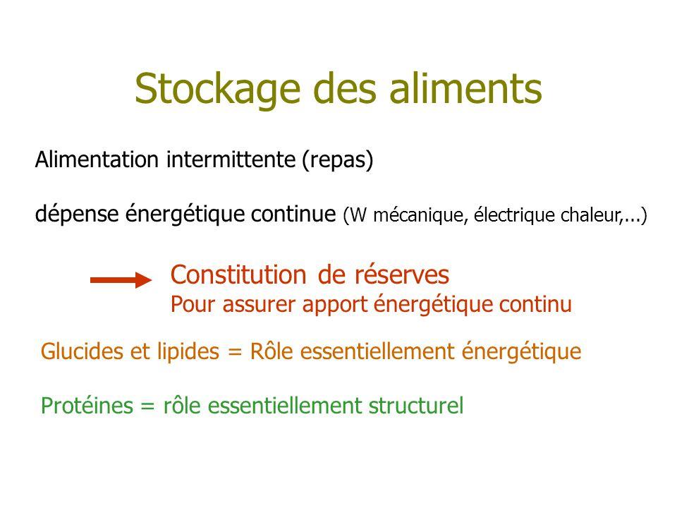 Stockage des aliments Alimentation intermittente (repas) dépense énergétique continue (W mécanique, électrique chaleur,...) Constitution de réserves P