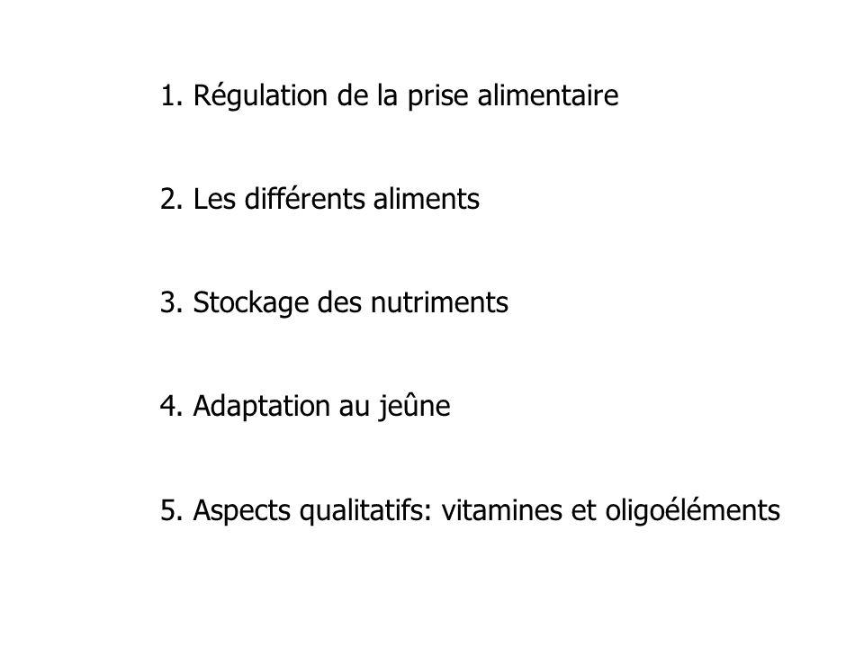 1. Régulation de la prise alimentaire 2. Les différents aliments 3. Stockage des nutriments 4. Adaptation au jeûne 5. Aspects qualitatifs: vitamines e