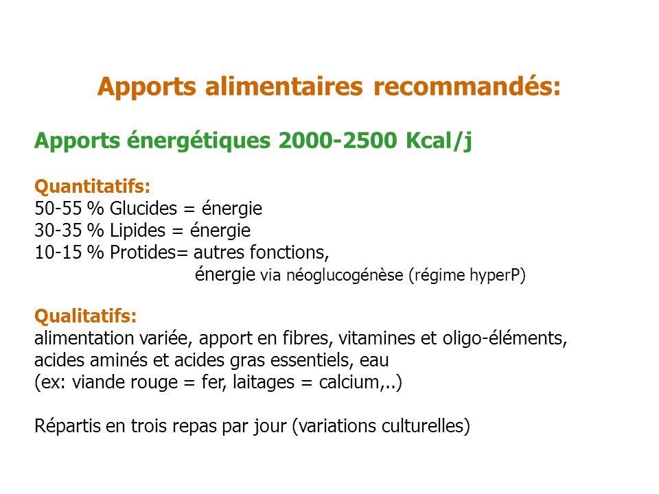 Apports énergétiques 2000-2500 Kcal/j Quantitatifs: 50-55 % Glucides = énergie 30-35 % Lipides = énergie 10-15 % Protides= autres fonctions, énergie v