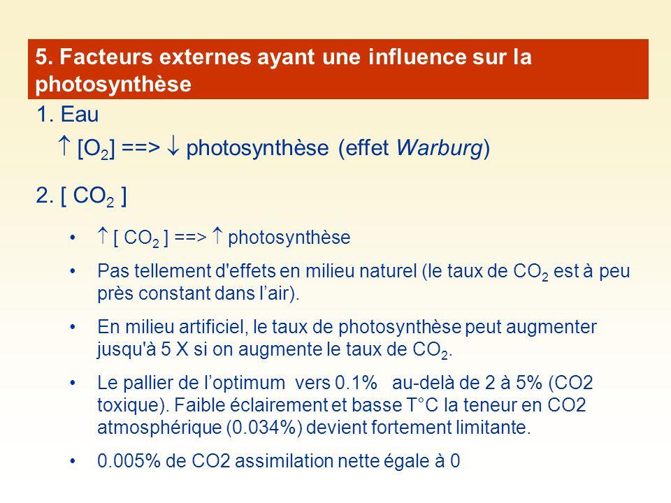 5. Facteurs externes ayant une influence sur la photosynthèse 1. Eau 2. [ CO 2 ] [ CO 2 ] ==> photosynthèse Pas tellement d'effets en milieu naturel (