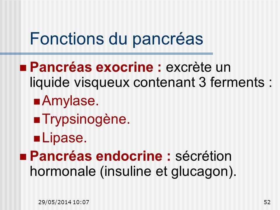29/05/2014 10:0952 Fonctions du pancréas Pancréas exocrine : excrète un liquide visqueux contenant 3 ferments : Amylase.