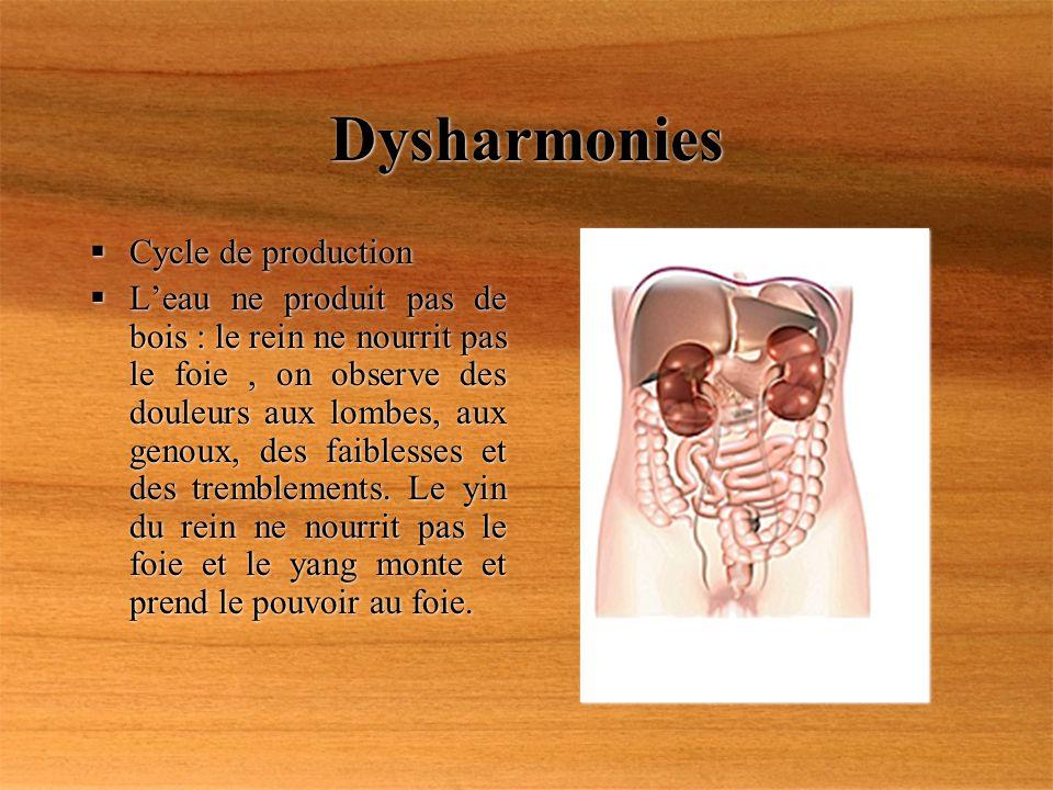 Dysharmonies Cycle de production Leau ne produit pas de bois : le rein ne nourrit pas le foie, on observe des douleurs aux lombes, aux genoux, des fai