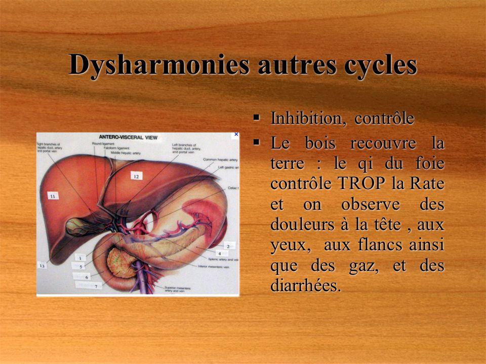 Dysharmonies autres cycles Inhibition, contrôle Le bois recouvre la terre : le qi du foie contrôle TROP la Rate et on observe des douleurs à la tête,