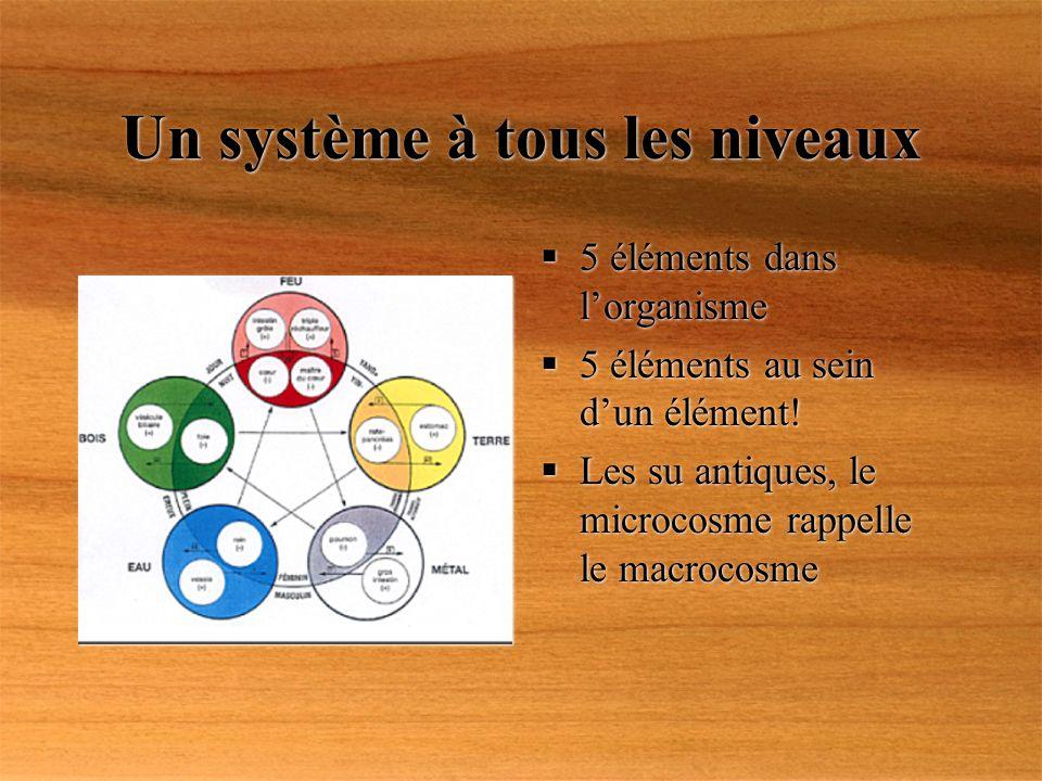 Un système à tous les niveaux 5 éléments dans lorganisme 5 éléments au sein dun élément! Les su antiques, le microcosme rappelle le macrocosme 5 éléme