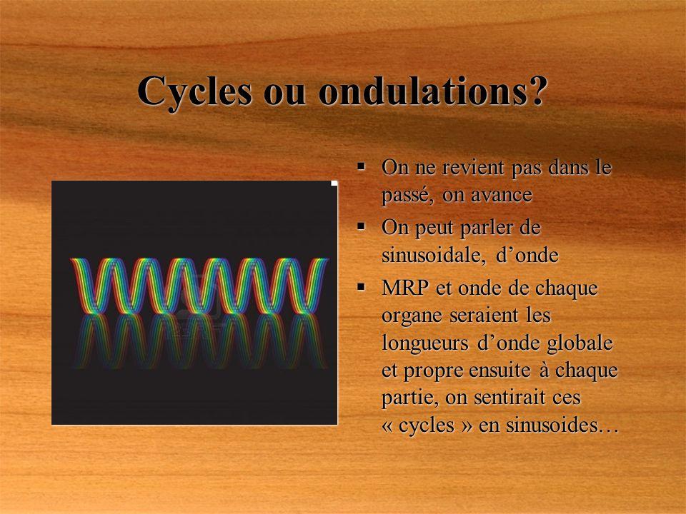 Cycles ou ondulations? On ne revient pas dans le passé, on avance On peut parler de sinusoidale, donde MRP et onde de chaque organe seraient les longu