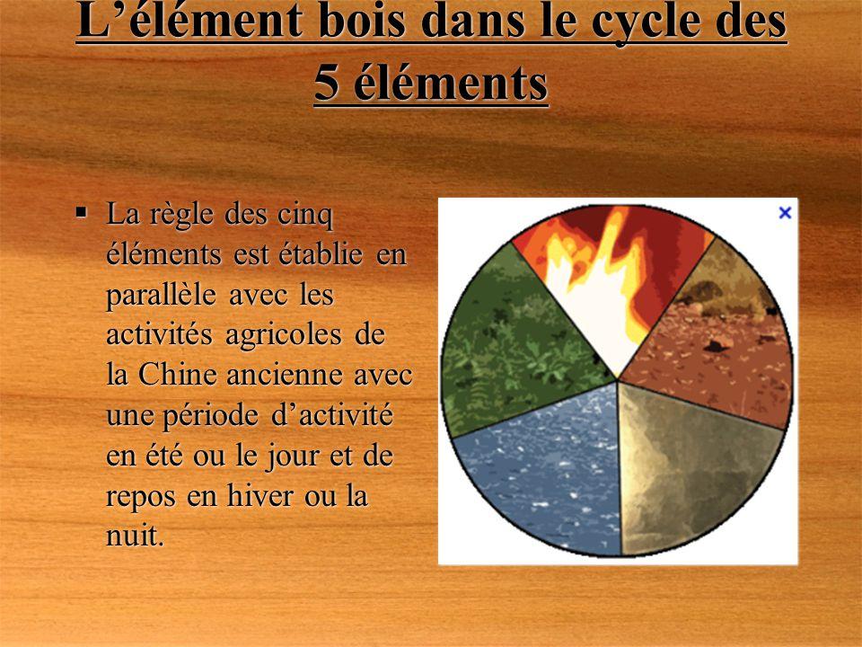 Lélément bois dans le cycle des 5 éléments La règle des cinq éléments est établie en parallèle avec les activités agricoles de la Chine ancienne avec