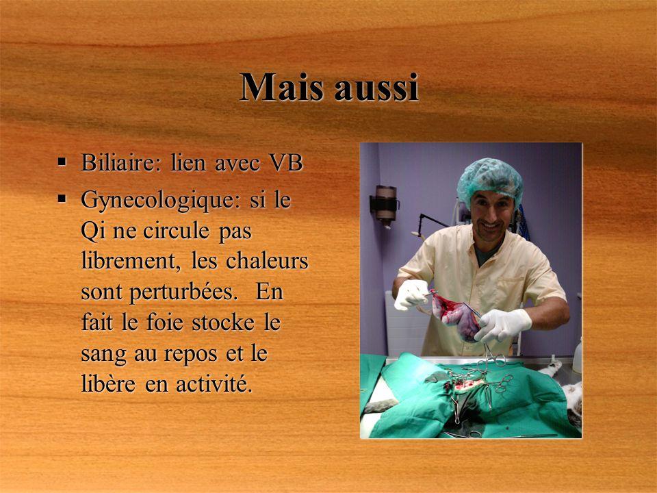 Mais aussi Biliaire: lien avec VB Gynecologique: si le Qi ne circule pas librement, les chaleurs sont perturbées. En fait le foie stocke le sang au re