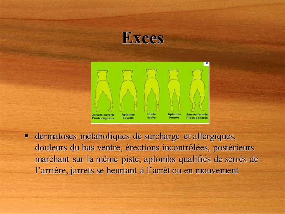 Exces dermatoses métaboliques de surcharge et allergiques, douleurs du bas ventre, érections incontrôlées, postérieurs marchant sur la même piste, apl