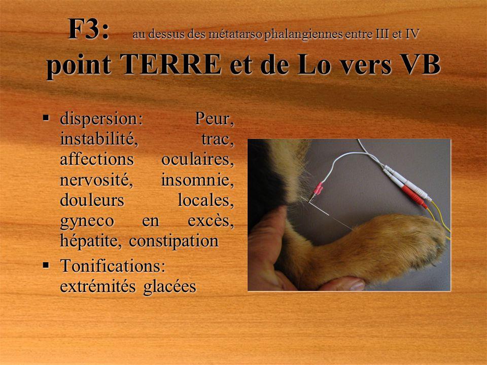F3: au dessus des métatarso phalangiennes entre III et IV point TERRE et de Lo vers VB dispersion: Peur, instabilité, trac, affections oculaires, nerv