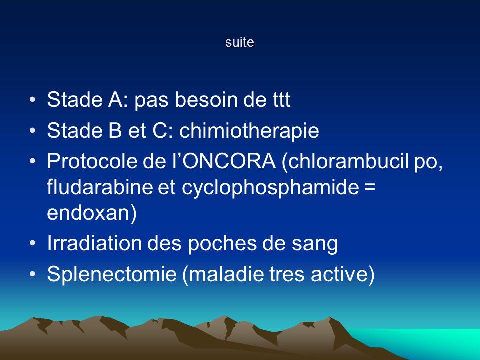 suite Stade A: pas besoin de ttt Stade B et C: chimiotherapie Protocole de lONCORA (chlorambucil po, fludarabine et cyclophosphamide = endoxan) Irradiation des poches de sang Splenectomie (maladie tres active)