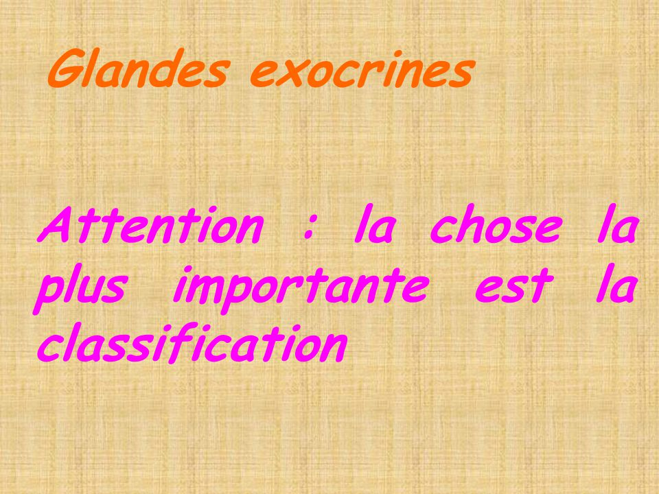 Glandes exocrines Attention : la chose la plus importante est la classification