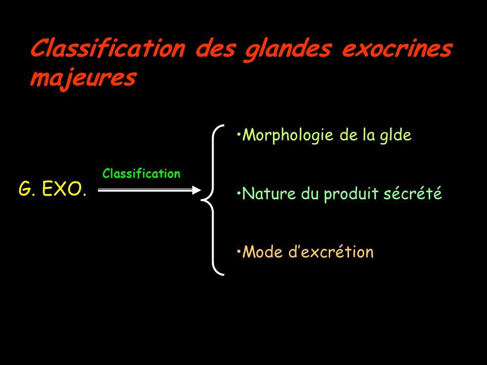 Nature du produit sécrété G. pylorique Pancréas exocrine G. Salivaire principale
