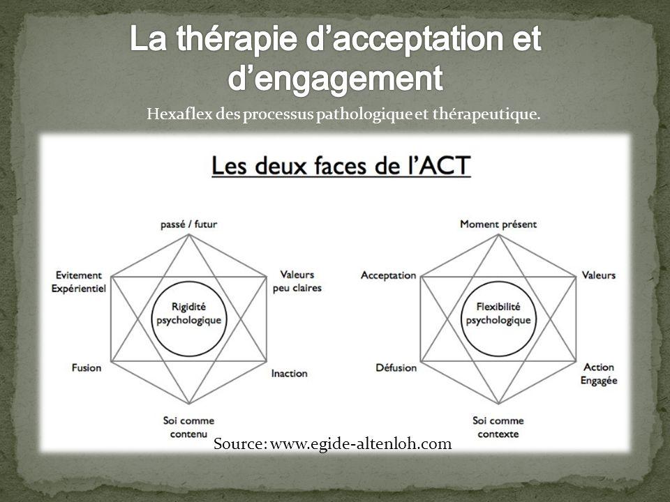 Hexaflex des processus pathologique et thérapeutique. Source: www.egide-altenloh.com