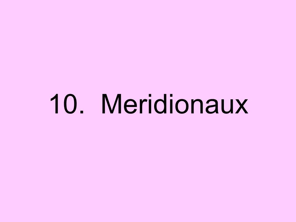 10. Meridionaux