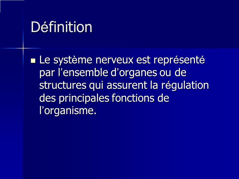 D é finition Le syst è me nerveux est repr é sent é par l ensemble d organes ou de structures qui assurent la r é gulation des principales fonctions d