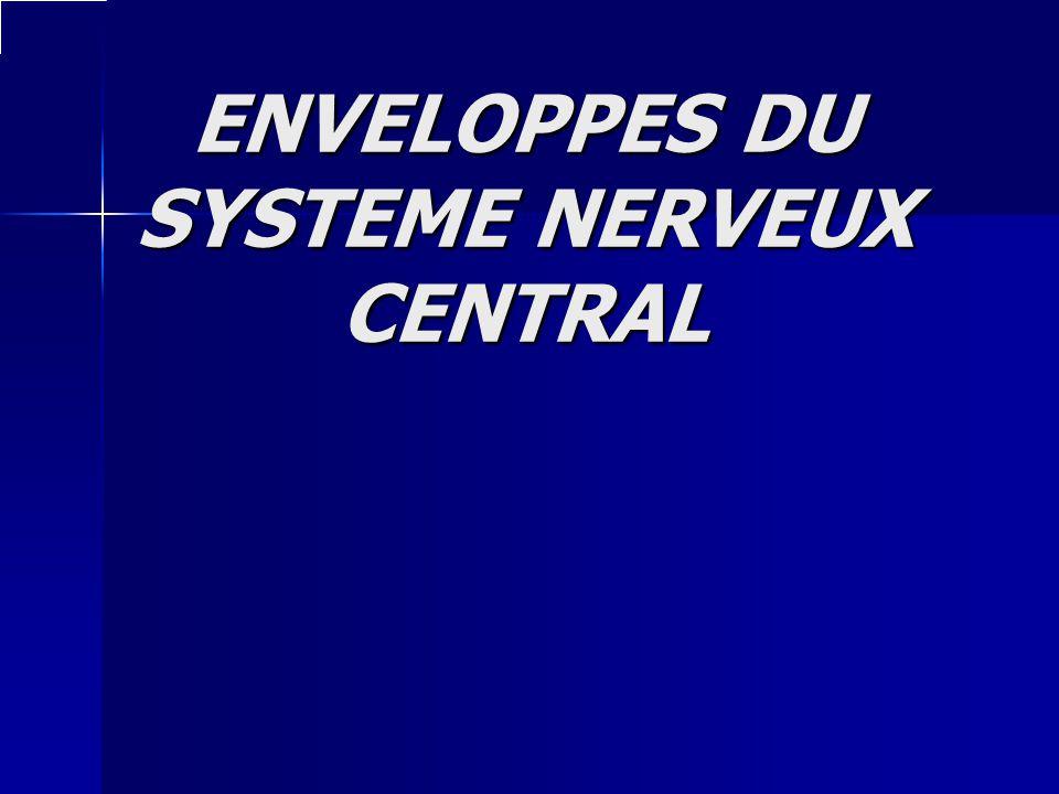 ENVELOPPES DU SYSTEME NERVEUX CENTRAL