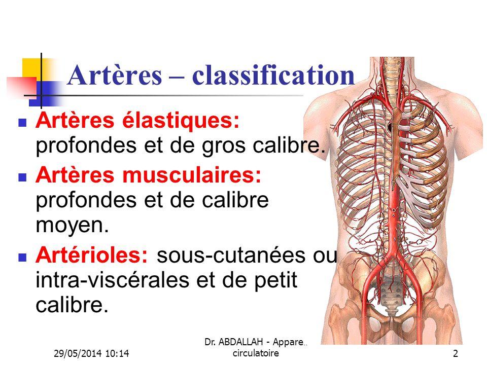29/05/2014 10:16 Dr. ABDALLAH - Appareil circulatoire2 Artères – classification Artères élastiques: profondes et de gros calibre. Artères musculaires: