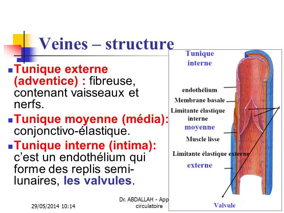 29/05/2014 10:16 Dr. ABDALLAH - Appareil circulatoire20 Veines – structure Tunique externe (adventice) : fibreuse, contenant vaisseaux et nerfs. Tuniq