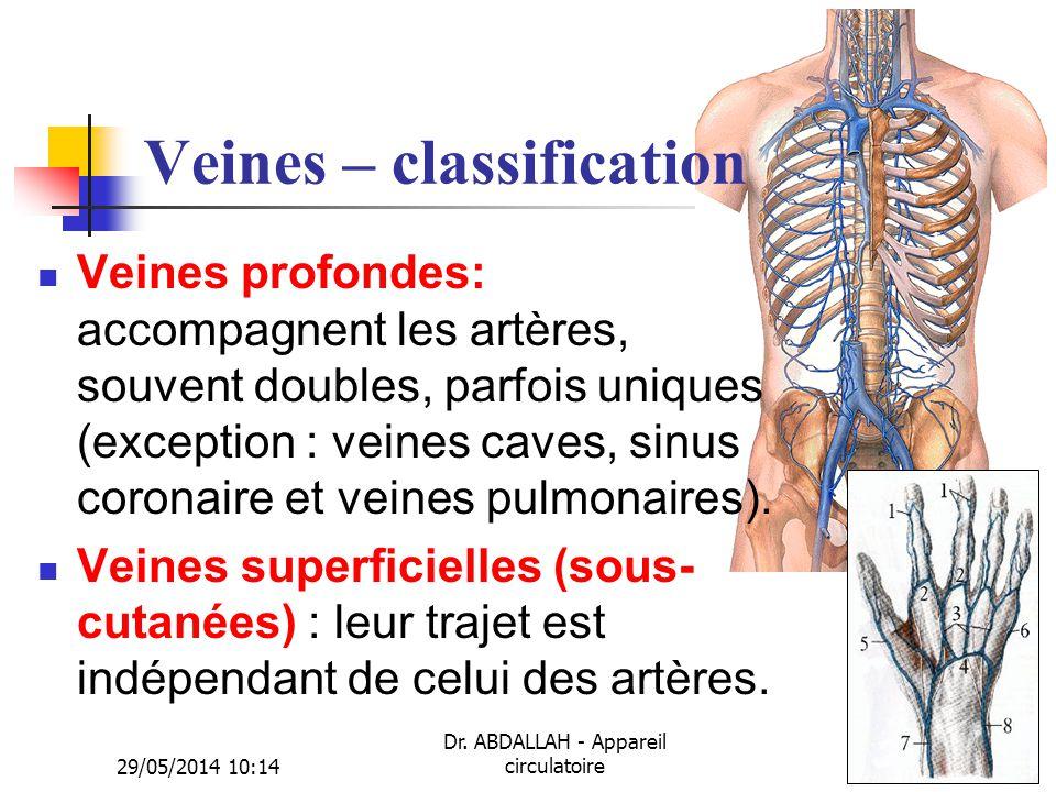 29/05/2014 10:16 Dr. ABDALLAH - Appareil circulatoire22 Veines – classification Veines profondes: accompagnent les artères, souvent doubles, parfois u