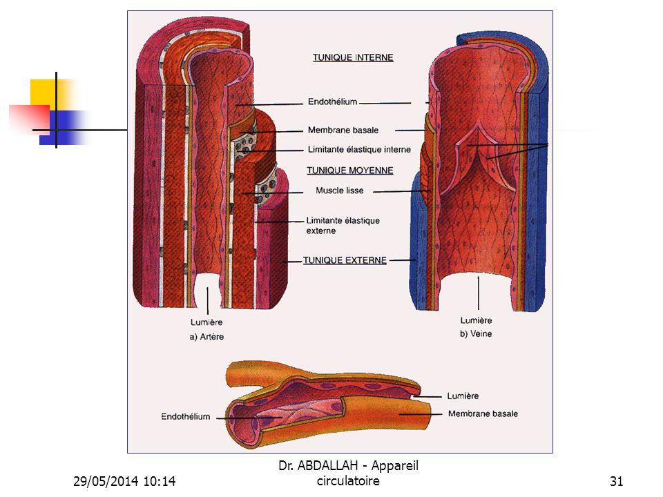 29/05/2014 10:16 Dr. ABDALLAH - Appareil circulatoire31