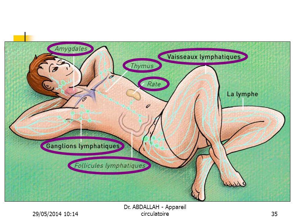 29/05/2014 10:16 Dr. ABDALLAH - Appareil circulatoire35
