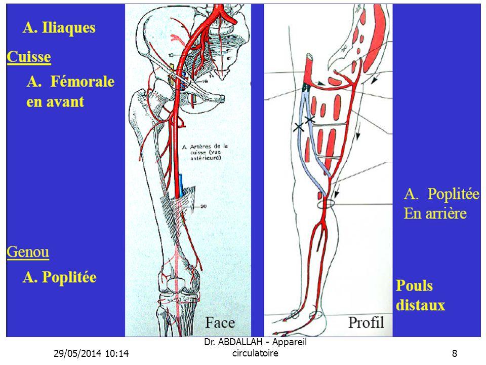 29/05/2014 10:16 Dr. ABDALLAH - Appareil circulatoire8