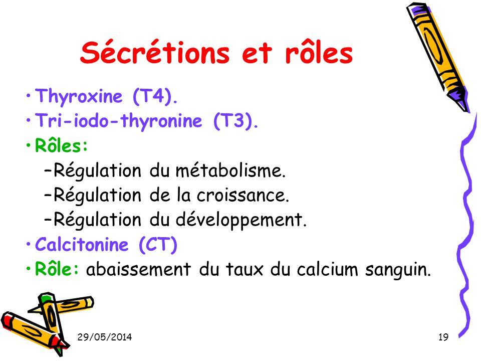 29/05/201419 Sécrétions et rôles Thyroxine (T4). Tri-iodo-thyronine (T3). Rôles: –Régulation du métabolisme. –Régulation de la croissance. –Régulation