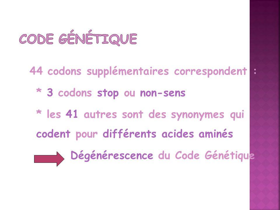 44 codons supplémentaires correspondent : * 3 codons stop ou non-sens * les 41 autres sont des synonymes qui codent pour différents acides aminés Dégé