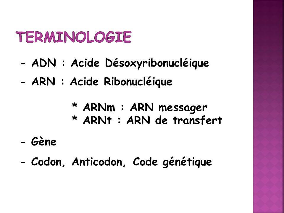 - ADN : Acide Désoxyribonucléique - ARN : Acide Ribonucléique * ARNm : ARN messager * ARNt : ARN de transfert - Gène - Codon, Anticodon, Code génétiqu