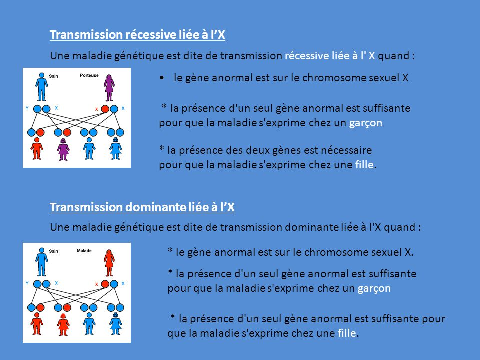 le gène anormal est sur le chromosome sexuel X Une maladie génétique est dite de transmission dominante liée à l'X quand : Transmission récessive liée