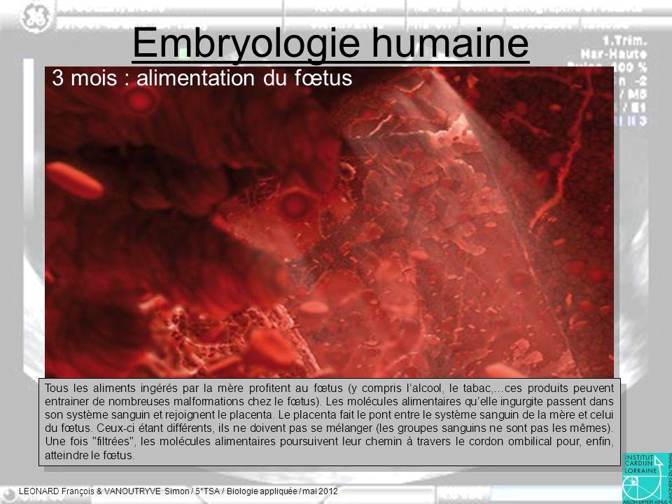 Embryologie humaine LEONARD François & VANOUTRYVE Simon / 5°TSA / Biologie appliquée / mai 2012 3 mois : alimentation du fœtus Tous les aliments ingér