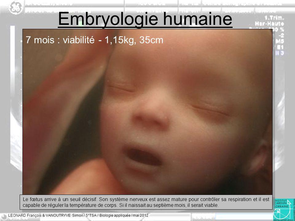 Embryologie humaine LEONARD François & VANOUTRYVE Simon / 5°TSA / Biologie appliquée / mai 2012 7 mois : viabilité - 1,15kg, 35cm Le fœtus arrive à un