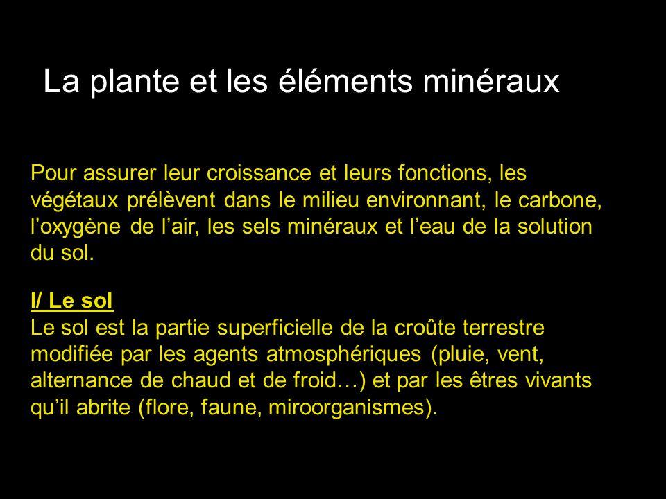 A/ constitution du sol La fraction minérale représente lensemble des produits de la dégradation physique puis chimique de la roche mère.