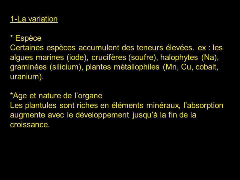 2- Rôle des élts minéraux 2-1- Les macroéléments * Le Potassium : - Accumulation dans la vacuole - Équilibre acido-basique - Accompagne les anions - Activation des enzymes - Synthèse des protéines et des polysaccharides * Le Sodium - Nest pas indispensable pour la majorité des plantes - Nécessaire aux algues marines, halophytes