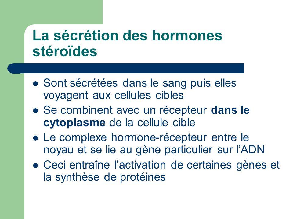 La sécrétion des hormones stéroïdes Sont sécrétées dans le sang puis elles voyagent aux cellules cibles Se combinent avec un récepteur dans le cytopla